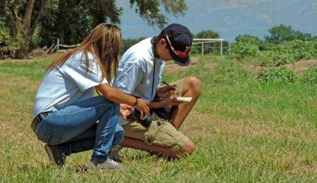 Gutt og jente samarbeider, foto og journalist