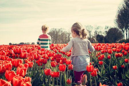 To jenter løper igjennom tulipaner